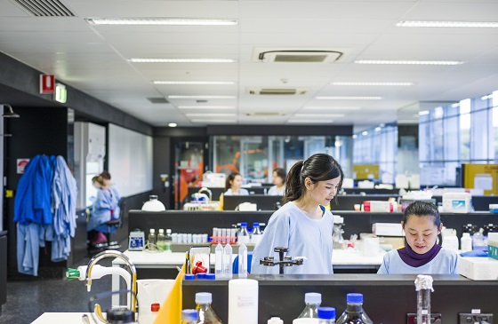 Two female science students are working in a laboratory at UniSA.