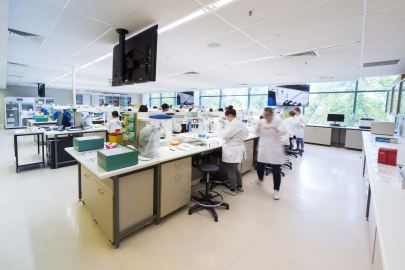Histopathology and Haematology laboratory.jpg