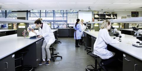 Medical science students using campus laboratory facilities
